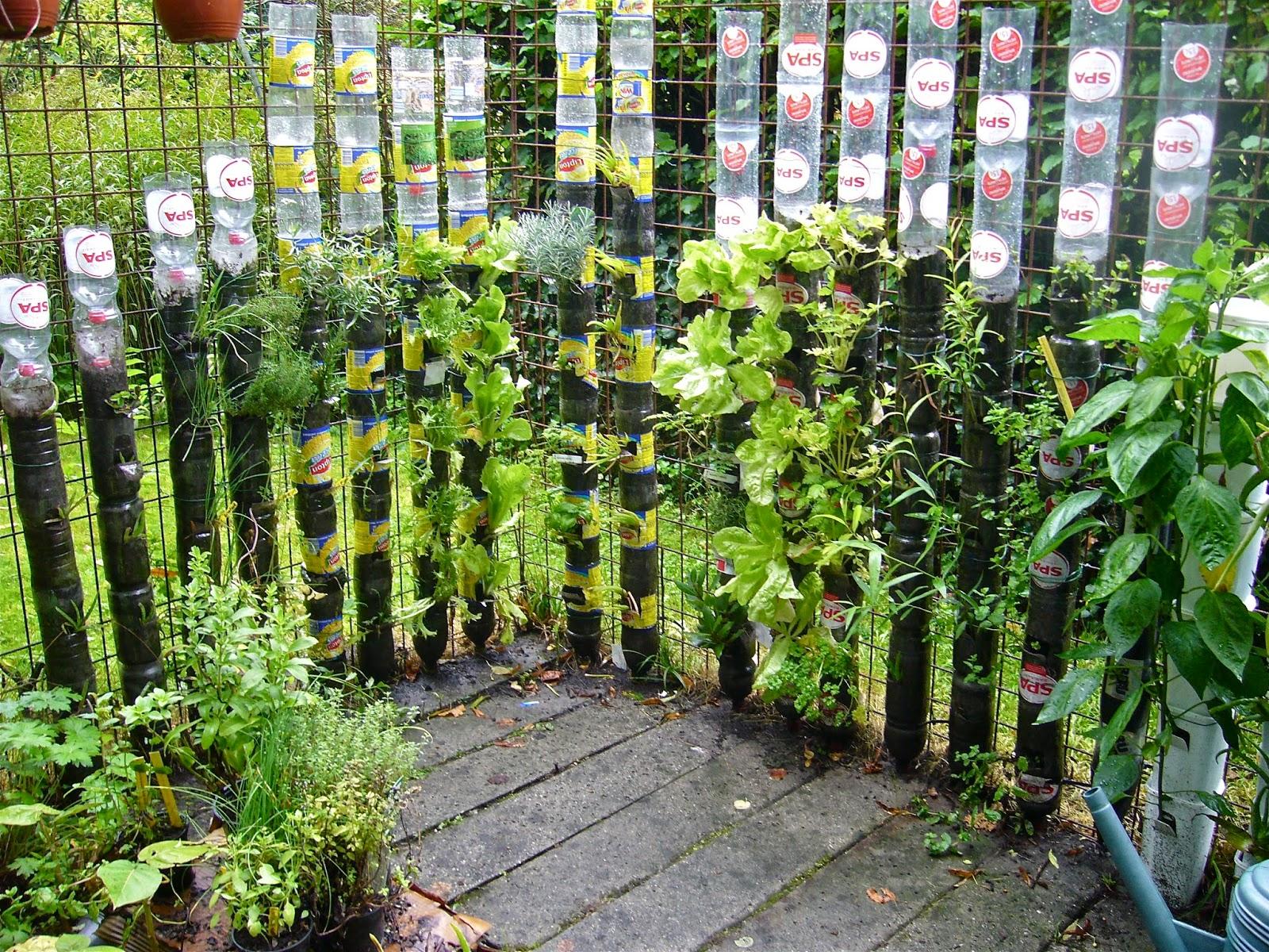 ma poubelle est un jardin jardin suspendu avec des bouteilles en plastiques. Black Bedroom Furniture Sets. Home Design Ideas