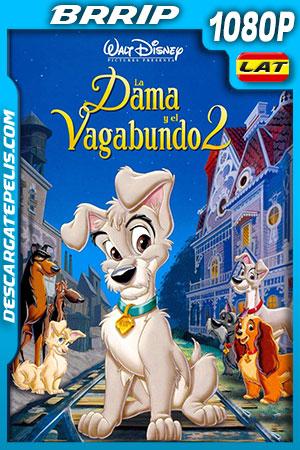 La dama y el vagabundo 2 (2001) HD 1080p BRRip Latino – Ingles