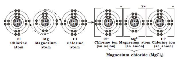 OMTEX CLASSES: Explain the formation of an ionic compound