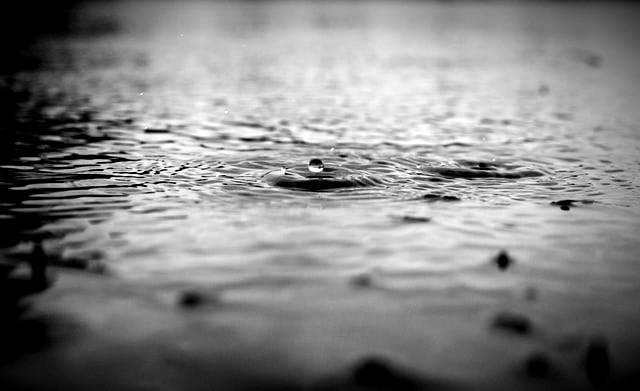 सावन की बरसात शायरी