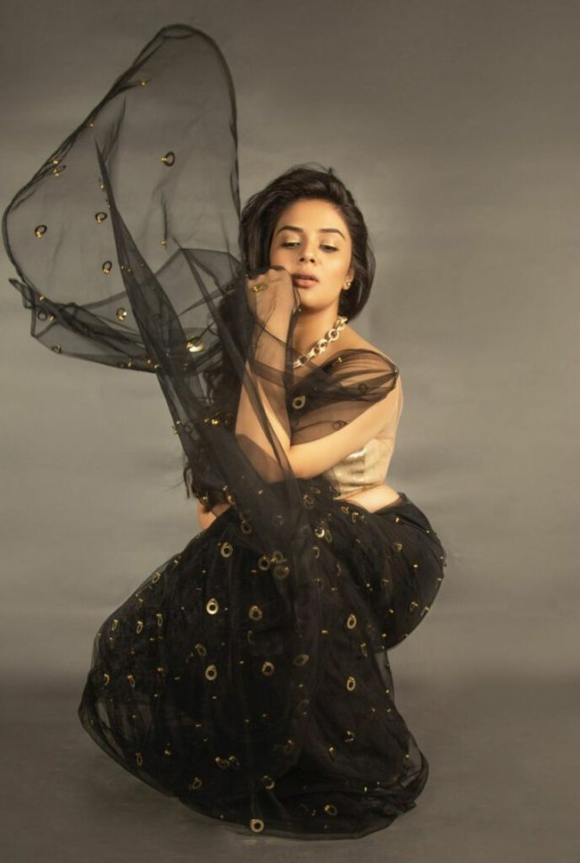 Actors Gallery: Sreemukhi Trendy Saree Pictures