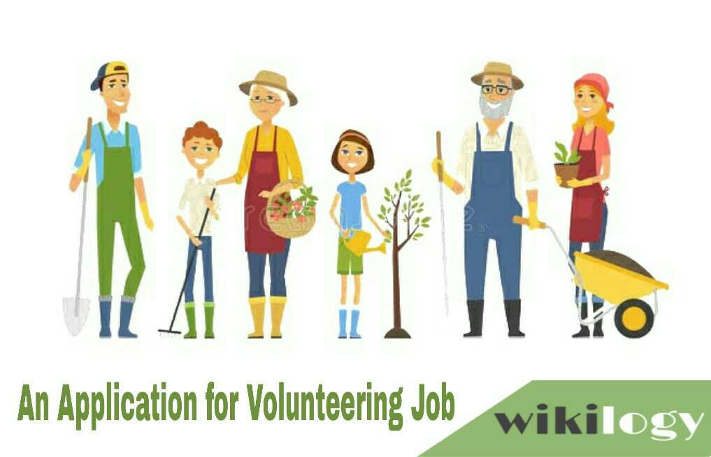 An Application for Volunteering Job