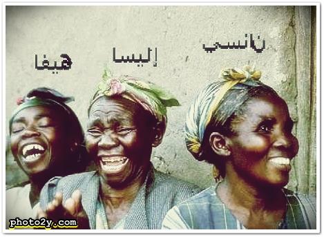 صور مضحكة على نانسي عجرم وهيفاء وهبي واليسا خوري