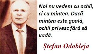 Citatul zilei: 13 octombrie - Ștefan Odobleja