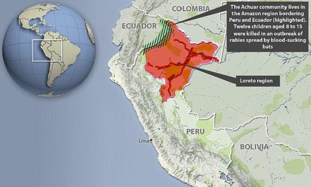 Φοβισμένοι όχλοι στο Περού καίουν εκατοντάδες νυχτερίδες με φακούς, καθώς η υστερία του κορωνοϊού, μεγαλώνει