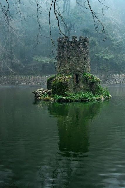 Lugares abandonados retomados por la naturaleza