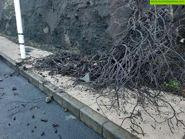 CC de Los Llanos reclama una solución urgente para los desprendimientos de La Ladera