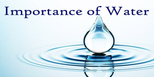 10 Lines on Importance of Water in English | Few Important Lines on Importance of Water in English