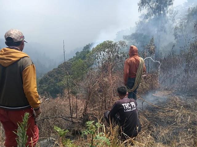Hutan di Kawasan TNBTS Kembali Terbakar