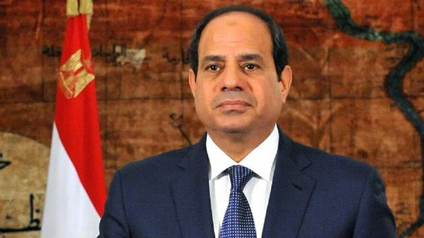 Sisi orders renovation of old woman's house