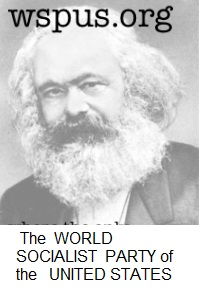World Socialist Party of the United States