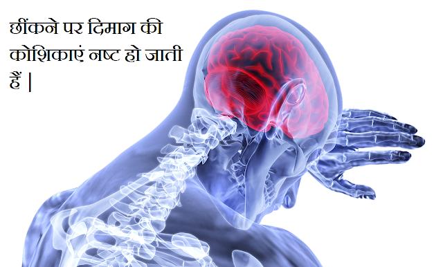 Amazing Facts | रोचक तथ्य भाग 1- hindivigyan