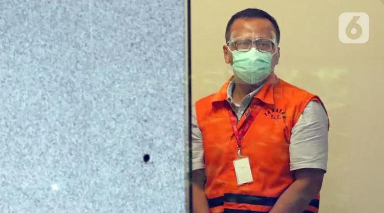 KPK Dalami Kasus Suap Benih Lobster Lewat Gubernur Bengkulu Rohidin Mersyah