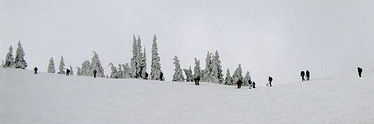 Grzbiet nad Halą Słowikową.