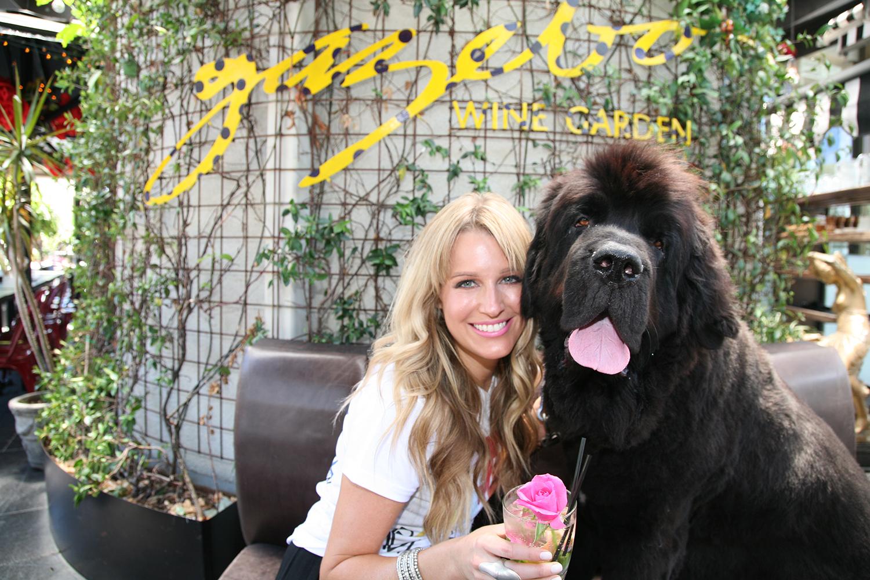 2020 Australian Dog Events Pet Expos Australian Dog Lover