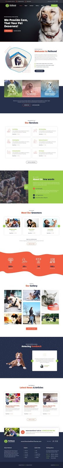 Animals Shop & Veterinary Website Theme