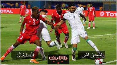 مشاهدة مباراة الجزائر والسنغال اليوم بث مباشر في كاس امم افريقيا