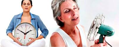 Menopausia síntomas tratamientos causas mujeres