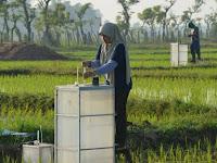 Pertanian Ramah Lingkungan untuk Pangan Berkelanjutan