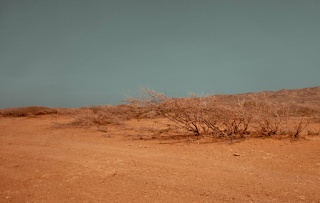 desertification-of-the-earth