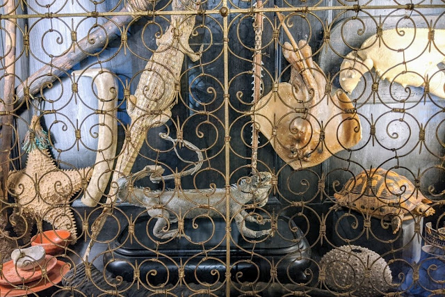 Salzburg Card: Curiosities Cabinet in DomQuartier