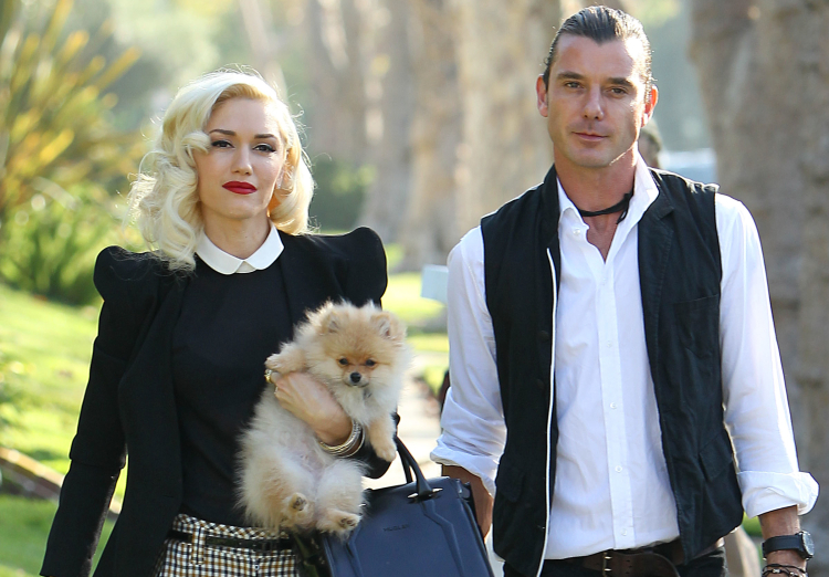 Gwen Stefani's ex Husband reportedly blasts her for ...