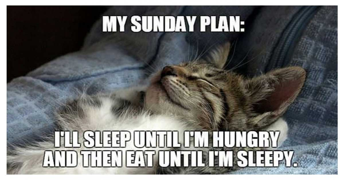 Funny & Inspirational Sunday Morning Quotes and Images