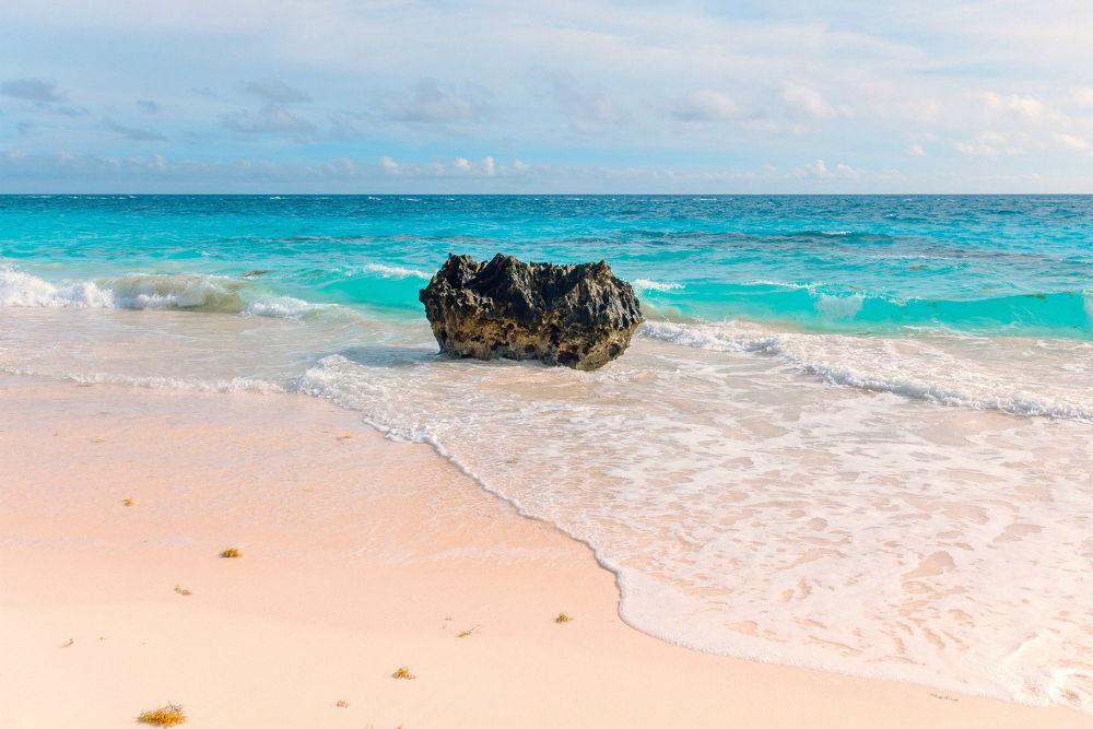 Pink Sands Beach Bermuda