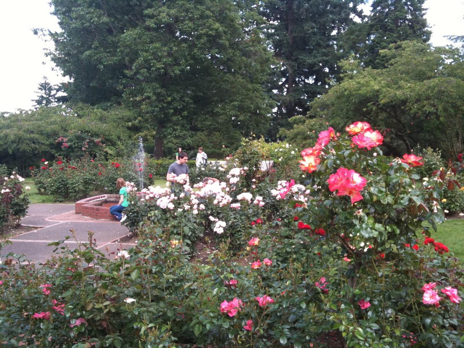 Welcome To Claire Damon S Wedding Blog Portland Rose Gardens