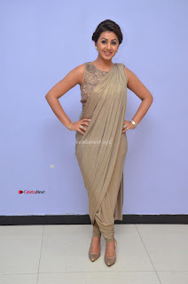 Nikki Galrani in Saree 124.JPG