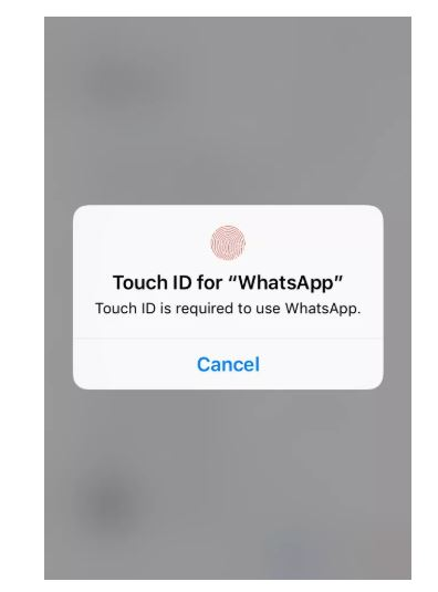 WhatsApp can now be locked using Face ID or Touch ID (DETAILS)