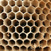 Flexible, Honeycomb Like Material Can Mop up Pollution