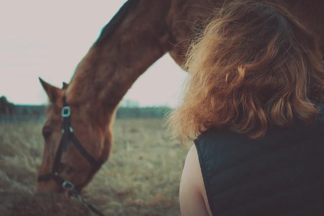Jak naprawdę wygląda praca z młodym koniem?