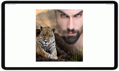 Animal Photo Editor App v5.0 Premium
