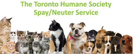 We Are A Proud Supporter Of The Toronto Humane Society