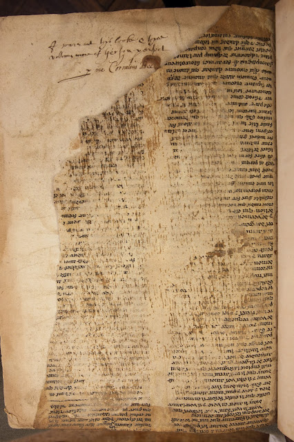 Bristol manuscript fragments of the famous Merlin legend among the oldest of their kind