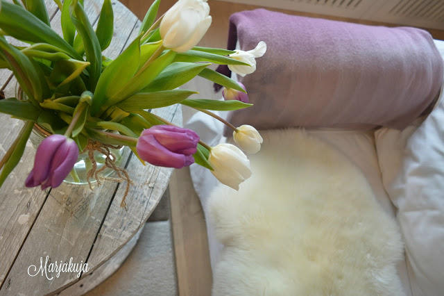 kaapelikela tulppaani ektorp sohva