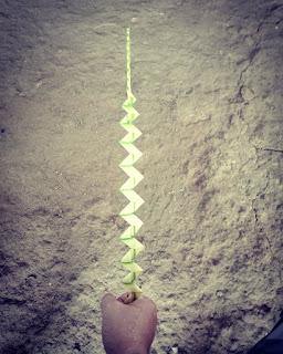 membuat keris dari janur kelapa