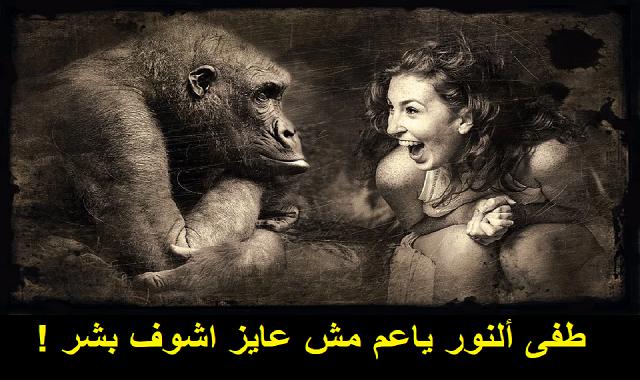 أغنية طفى ألنور ياعم - محمد رأفت