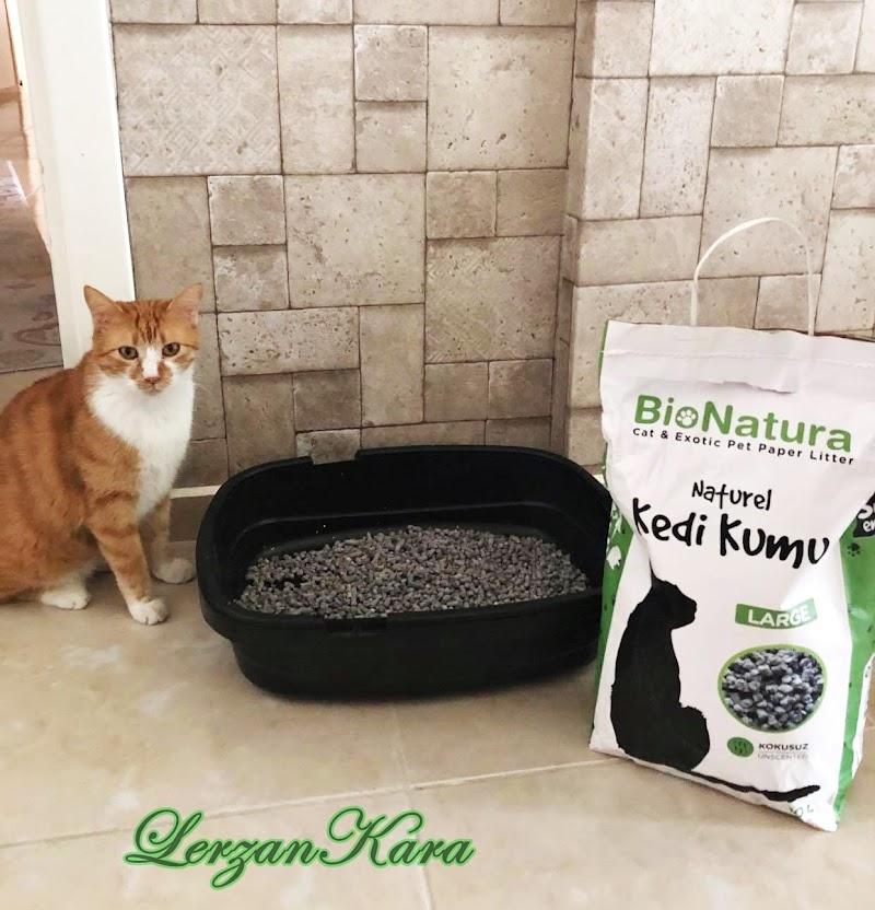 Sağlıklı Kedi Kumu BioNatura