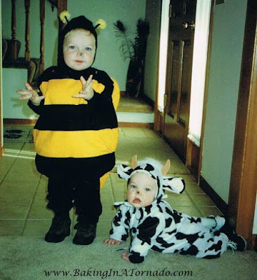 Bee and Cow Costumes | picture property of www.BakingInATornado.com