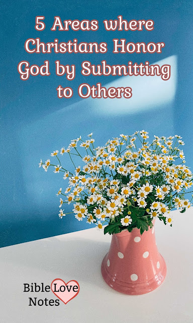 5 Areas where Christians are commanded to submit to others. By honoring others we honor God.