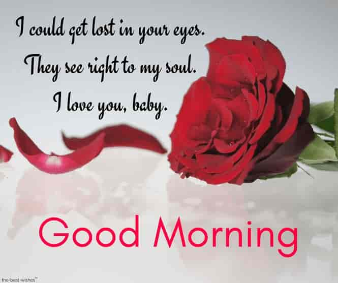 loving you good morning text for her with red rose