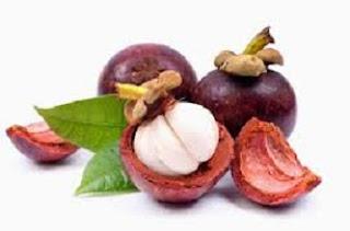 cara mengolah kulit manggis untuk dikonsumsi,cara mengolah kulit manggis menjadi obat kanker,cara mengolah kulit manggis sebagai obat,cara mengolah kulit manggis menjadi obat diabetes,