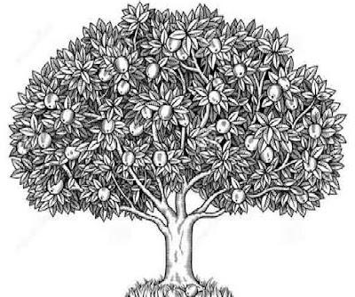 Tes Menggambar Pohon (BAUM Tree Test) pada Psikotes