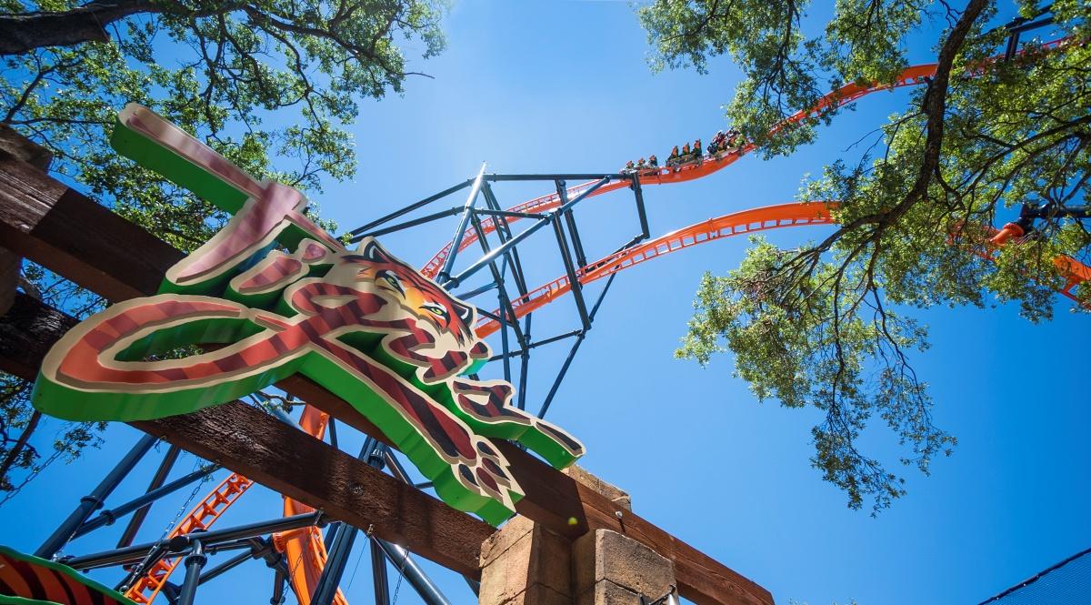 Parque Busch Gardens Tigris