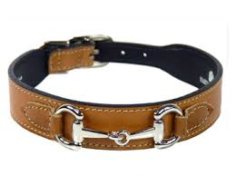 Your Dog And Fashion With Designer Dog Collars
