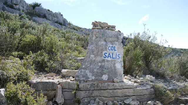 Col Salis