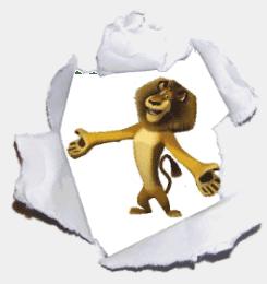 Madagascar - Rei Leão
