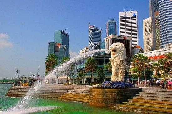 Singapura.jpg (550×367)